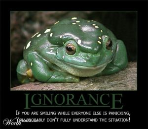 frog-ignorance-is-bliss